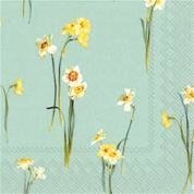 Elegant Narcissus Light Blue Kaffe 20 pk
